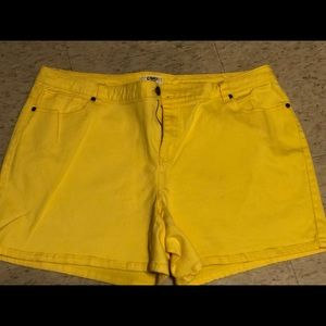 Cato's Plus size yellow shorts